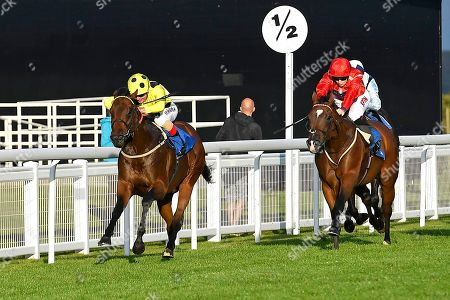 Winner of The British Stallion Studs EBF Conditions Stakes Emaraaty ridden by Andrea Atzeni and trained by Kevin Ryan during Evening Racing at Salisbury Racecourse on 3rd September 2019