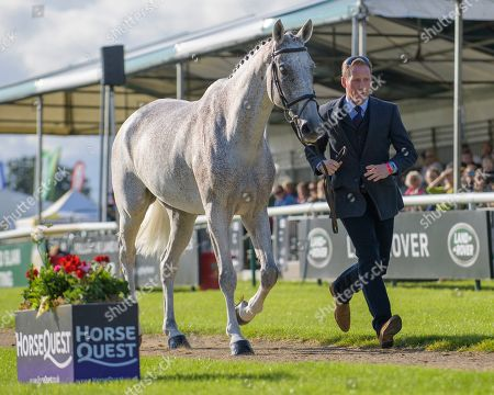 Stock Picture of Oliver Townend (GBR) riding Ballaghmor Class. First Horse Inspection.