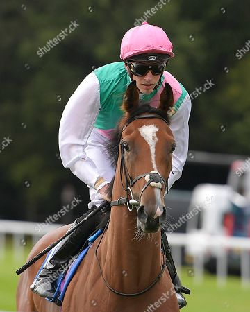 Snow Shower ridden by James Doyle goes down to the start of The Bob McCreery Memorial EBF Quidhampton Maiden Fillies' Stakes during Racing at Salisbury Racecourse on 5th September 2019