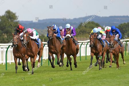 Editorial photo of Shadwell Dick Poole Fillies Stakes & EBF Race Day, Horse Racing, Salisbury Racecourse, Wiltshire, United Kingdom - 05 Sep 2019