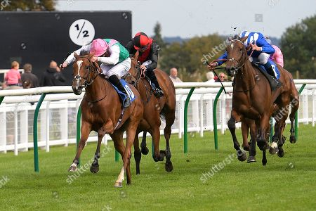Editorial picture of Shadwell Dick Poole Fillies Stakes & EBF Race Day, Horse Racing, Salisbury Racecourse, Wiltshire, United Kingdom - 05 Sep 2019