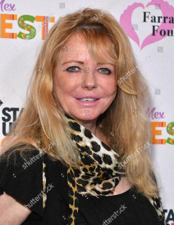 Stock Image of Cheryl Tiegs