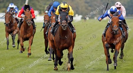 BLESS HIM (centre, Jamie Spencer) beats LORD NORTH (right) in The Lexicon Bracknell Handicap Ascot