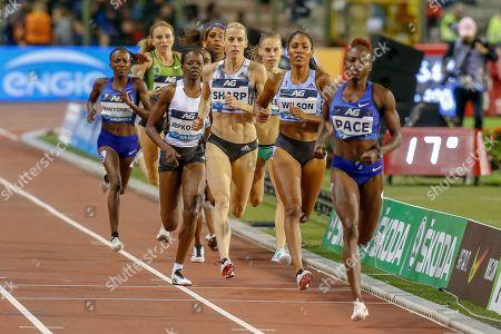 Editorial image of Athletics, IAAF Diamond League, Brussels - 31 Aug 2019
