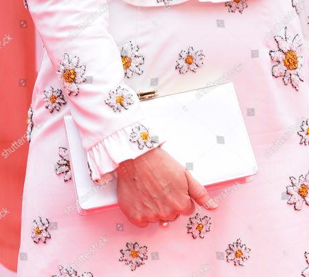 Sarah Paulson, bag detail