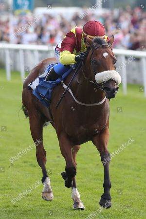 ROULSTON SCAR (3) ridden by Megan Nicholls and trained by Kevin Ryan winning The Coopers Marquees Handicap Stakes over 6f (£15,000)   during the Family Race Day held at York Racecourse, York