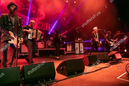 Editorial photo of Flogging Molly in concert at Michigan Lottery Amphitheatre, Sterling Heights, USA - 06 Sep 2019