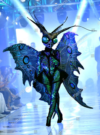 'The Butterfly' on the catwalk
