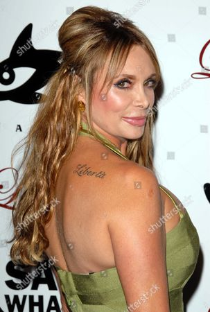 Stock Picture of Lesley Panettiere