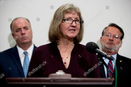 Elizabeth Whelan, Dan Kildee, Gary Peters. Elizabeth Whelan, the sister of Paul Whelan, accompanied by Sen. Gary Peters., D-Mich., right, and Rep. Dan Kildee, D-Mich., left, speaks at a news conference on Capitol Hill in Washington, to call on Congress to pass a resolution condemning the Russian government for detaining Paul Whelan