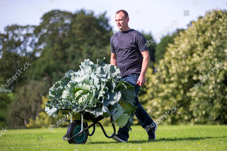 Craig Pearson with his winning heaviest Cabbage weighing 27.4kg at the giant vegetable competition