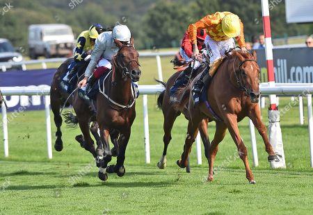 (R) Sleeping Lion (Jamie Spencer) wins The William Hill Mallard Handicap Stakes from (L) Charles Kingsley (Frankie Dettori).