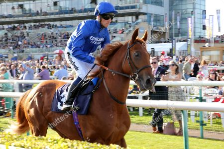 RAAEB (3) ridden by Jim Crowley and trained by Saeed Bin Suroor leaves the Parade Ring before winning The Gary Reid Memorial Irish EBF Maiden Stakes over 7f (£15,000) during the third day of the St Leger Festival at Doncaster Racecourse, Doncaster