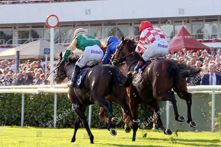 RAAEB (3) ridden by Jim Crowley and trained by Saeed Bin Suroor winning The Gary Reid Memorial Irish EBF Maiden Stakes over 7f (£15,000) during the third day of the St Leger Festival at Doncaster Racecourse, Doncaster