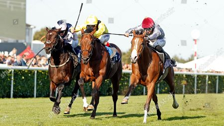 Stock Photo of QAYSAR (right, Pat Dobbs) beats BAYROOT (centre) and BALTIC BARON (left) in The P J Towey Construction Ltd Handicap Doncaster