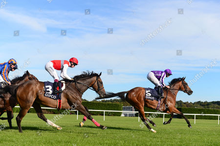 LEOPARDSTOWN. QIPCO Irish Champion Stakes (Group 1). MAGICAL and Ryan Moore win for trainer Aidan O'Brien from DEIRDRE.