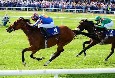 LEOPARDSTOWN. MOGUL and Ryan Moore win for trainer Aidan O'Brien.