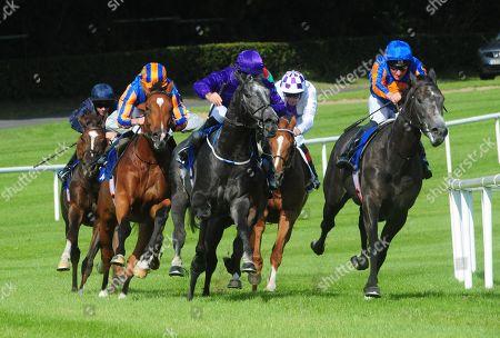 Editorial photo of Horse Racing - 14 Sep 2019
