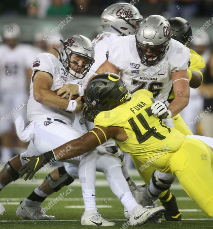 Montana quarterback Dalton Sneed, left, is sacked by Oregon's Mase Funa (No.47) off a block by Montana's Colton Keintz, right, during the first quarter of an NCAA college football game, in Eugene, Ore