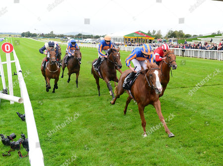 CURRAGH. Moyglare Stud Stakes. Group 1. LOVE and Ryan Moore beats DAAHYEH (right) for trainer Aidan O'Brien.