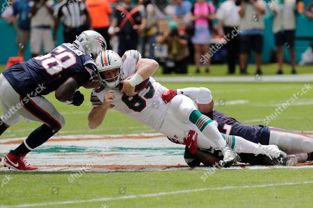 Jamie Collins, Elandon Roberts, Ryan Fitzpatrick. New England Patriots outside linebackers Jamie Collins (58) and Elandon Roberts (52) sack Miami Dolphins quarterback Ryan Fitzpatrick (14), during the first half at an NFL football game, in Miami Gardens, Fla