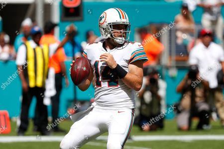 Miami Dolphins quarterback Ryan Fitzpatrick (14) looks to pass, during the second half at an NFL football game against the New England Patriots, in Miami Gardens, Fla