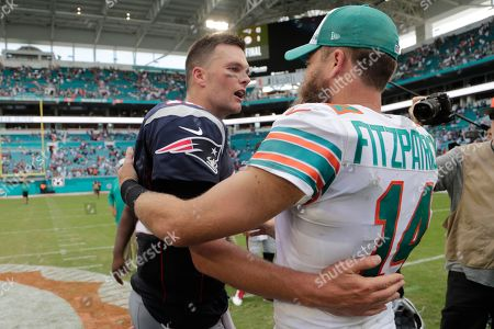 Tom Brady, Ryan Fitzpatrick. New England Patriots quarterback Tom Brady (12) and Miami Dolphins quarterback Ryan Fitzpatrick (14), greet each other at the end of an NFL football game, in Miami Gardens, Fla. The Patriots defeated the Dolphins 43-0