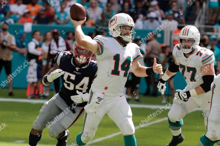 Ryan Fitzgerald. Miami Dolphins quarterback Ryan Fitzpatrick (14) looks to pass, during the second half at an NFL football game against the New England Patriots, in Miami Gardens, Fla
