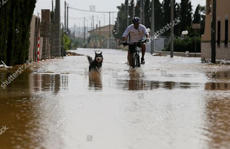 Stock Picture of A man rides a bike with his dog at a flooded street of La Daya Vieja, Alicante, eastern Spain, 15 September 2019. A total of six people have died due to the 'gota fria' (cold drop) phenomenon in the Mediterranean coast of Spain.
