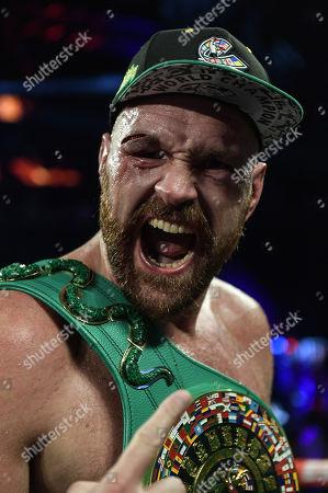 Stock Photo of Tyson Fury