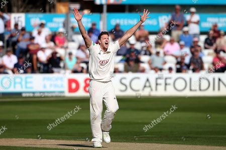 Morne Morkel of Surrey with an appeal for a wicket during Essex CCC vs Surrey CCC, Specsavers County Championship Division 1 Cricket at The Cloudfm County Ground on 17th September 2019