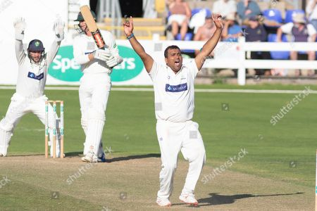 Stock Photo of Samit Patel appeals for LBW against Chris Wright during the Specsavers County Champ Div 2 match between Glamorgan County Cricket Club and Leicestershire County Cricket Club at the SWALEC Stadium, Cardiff