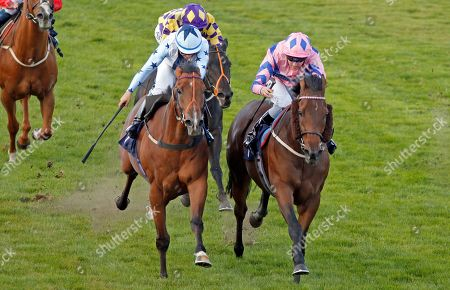 HAN SOLO BERGER (right, Tom Queally) beats EXCELLENT GEORGE (left) in The Injured Jockeys Fund Handicap Yarmouth
