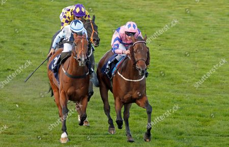 Editorial photo of Horse Racing - 17 Sep 2019