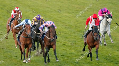 Stock Picture of HAN SOLO BERGER (centre, Tom Queally) beats EXCELLENT GEORGE (left) and FOXY FOREVER (right) in The Injured Jockeys Fund Handicap Yarmouth