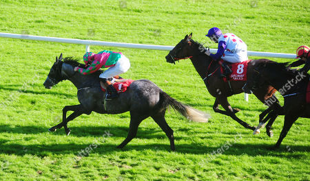 Stock Photo of GALWAY STORMY TALE and Ben Coen win the James P Cunningham Electrical Handicap.