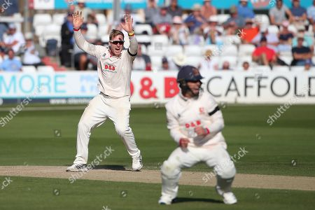 Stock Picture of Simon Harmer of Essex celebrates taking the wicket of Ben Foakes during Essex CCC vs Surrey CCC, Specsavers County Championship Division 1 Cricket at The Cloudfm County Ground on 18th September 2019