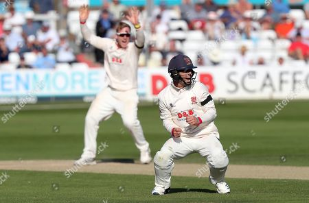 Essex captain Ryan ten Doeschate celebrates Essex taking the wicket of Ben Foakes during Essex CCC vs Surrey CCC, Specsavers County Championship Division 1 Cricket at The Cloudfm County Ground on 18th September 2019