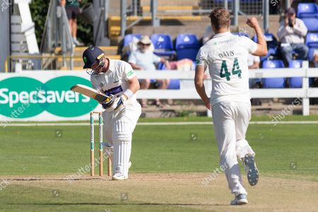 Stock Image of WICKET - Will Davis has David Lloyd caught behind during the Specsavers County Champ Div 2 match between Glamorgan County Cricket Club and Leicestershire County Cricket Club at the SWALEC Stadium, Cardiff