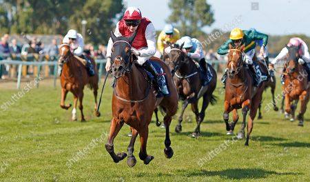 Stock Picture of FANNY LOGAN (Robert Havlin) wins The EBF Stallions John Musker Fillies Stakes Yarmouth