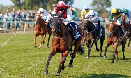 Stock Photo of FANNY LOGAN (Robert Havlin) wins The EBF Stallions John Musker Fillies Stakes Yarmouth