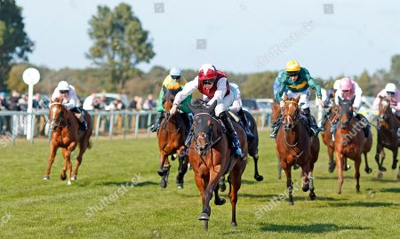 Editorial image of Horse Racing - 18 Sep 2019
