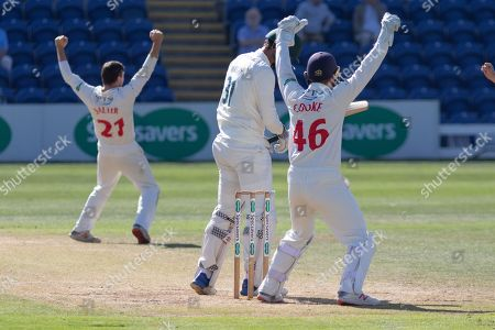 Editorial photo of Glamorgan County Cricket Club v Leicestershire County Cricket Club, Specsavers County Champ Div 2., Day Four - 19 Sep 2019