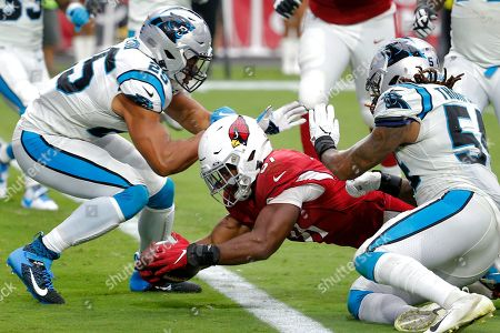 Arizona Cardinals running back David Johnson (31) dives in for the touchdown as Carolina Panthers strong safety Eric Reid (25) and outside linebacker Shaq Thompson (54) defends during the second half of an NFL football game, in Glendale, Ariz