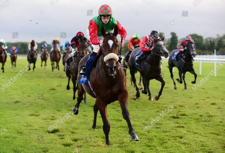 FAIRYHOUSE. BIGGER AND BETTER and Paddy Harnett win for trainer Tony Martin.