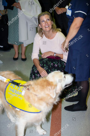 Sophie Countess of Wessex meets Daisy the Pat dog at the Hospital as she prepares to unveil the hospital's new MRI Scanner