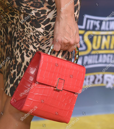 Stock Image of Jessica Collins, bag detail
