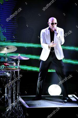 Stock Image of Pitbull