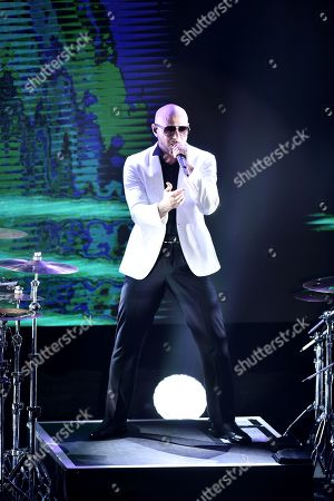 Stock Picture of Pitbull