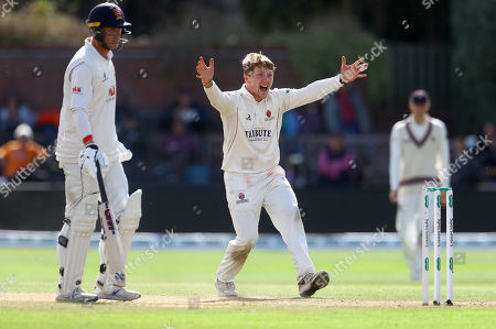 Dom Bess of Somerset appeals unsuccessfully for lbw against Sir Alastair Cook of Essex